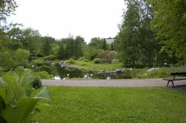 Pikavisiitti Kumpulan Kasvitieteelliseen Puutarhaan Gardenprogressio